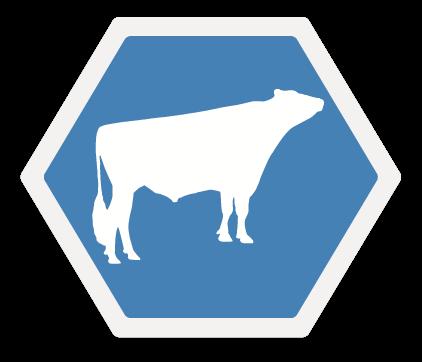 Proven Icon